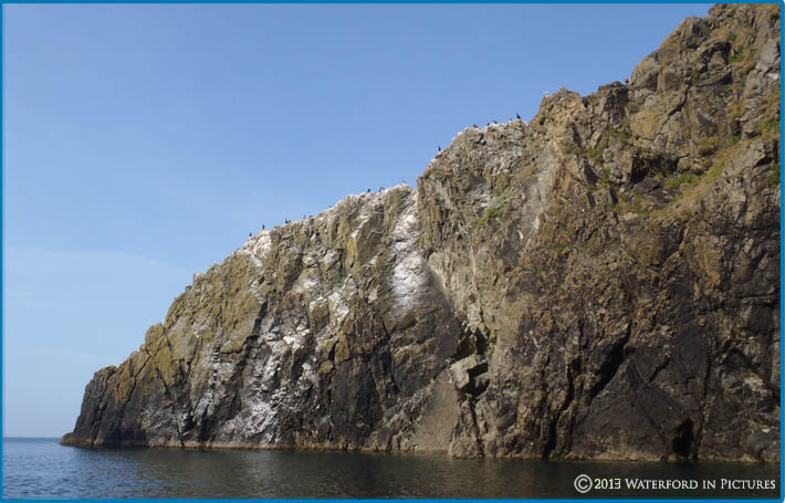 image of Waterford Coastline off Garrarus